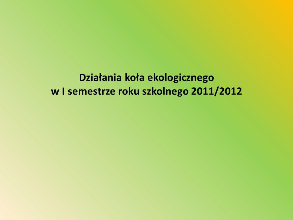 Działania koła ekologicznego w I semestrze roku szkolnego 2011/2012