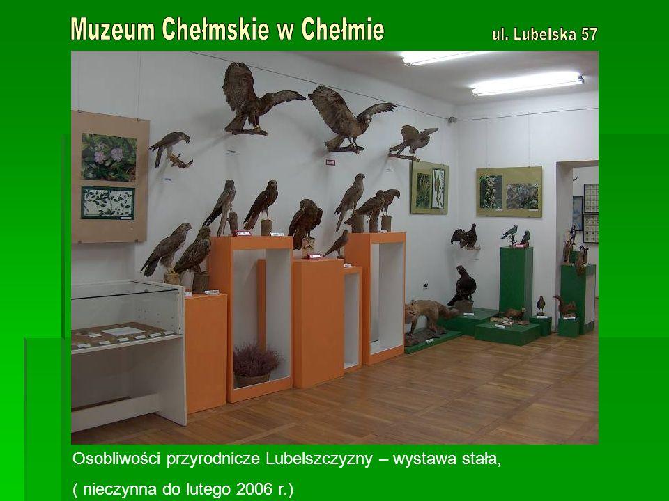 Osobliwości przyrodnicze Lubelszczyzny – wystawa stała, ( nieczynna do lutego 2006 r.)