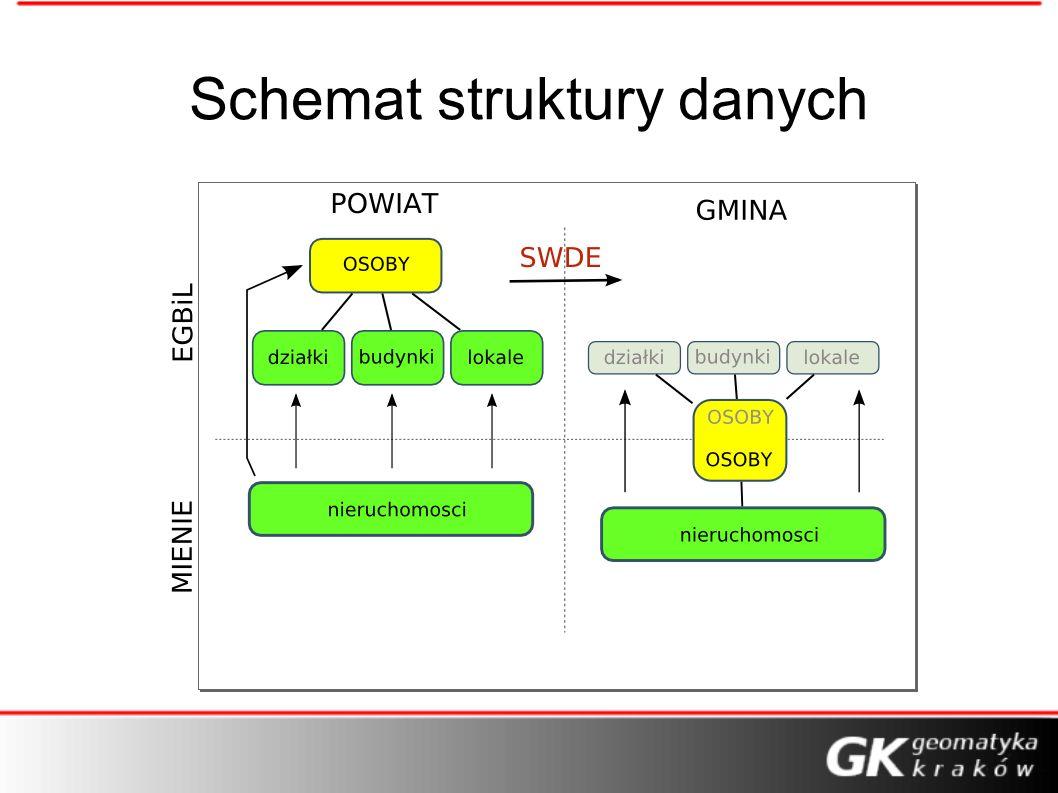 Schemat struktury danych