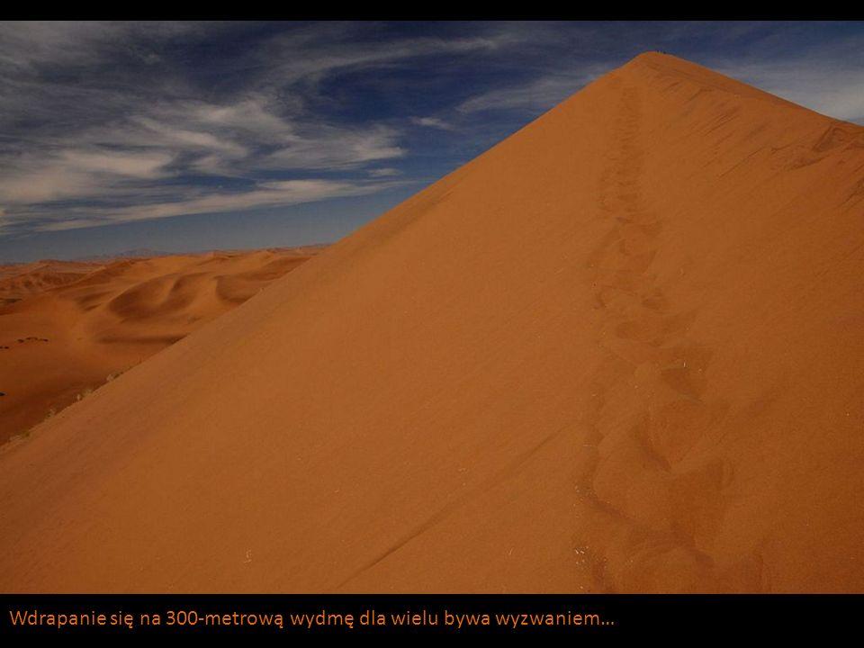 Wdrapanie się na 300-metrową wydmę dla wielu bywa wyzwaniem…