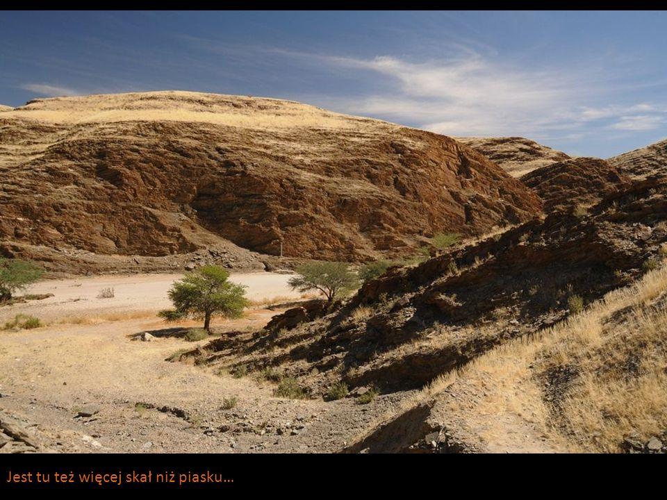 Jest tu też więcej skał niż piasku…
