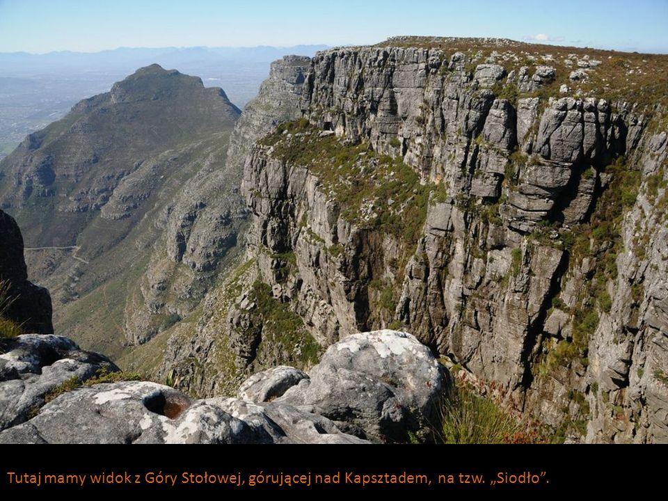 Tutaj mamy widok z Góry Stołowej, górującej nad Kapsztadem, na tzw. Siodło.