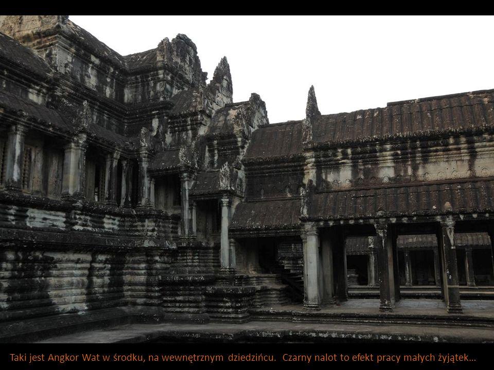 Taki jest Angkor Wat w środku, na wewnętrznym dziedzińcu. Czarny nalot to efekt pracy małych żyjątek…