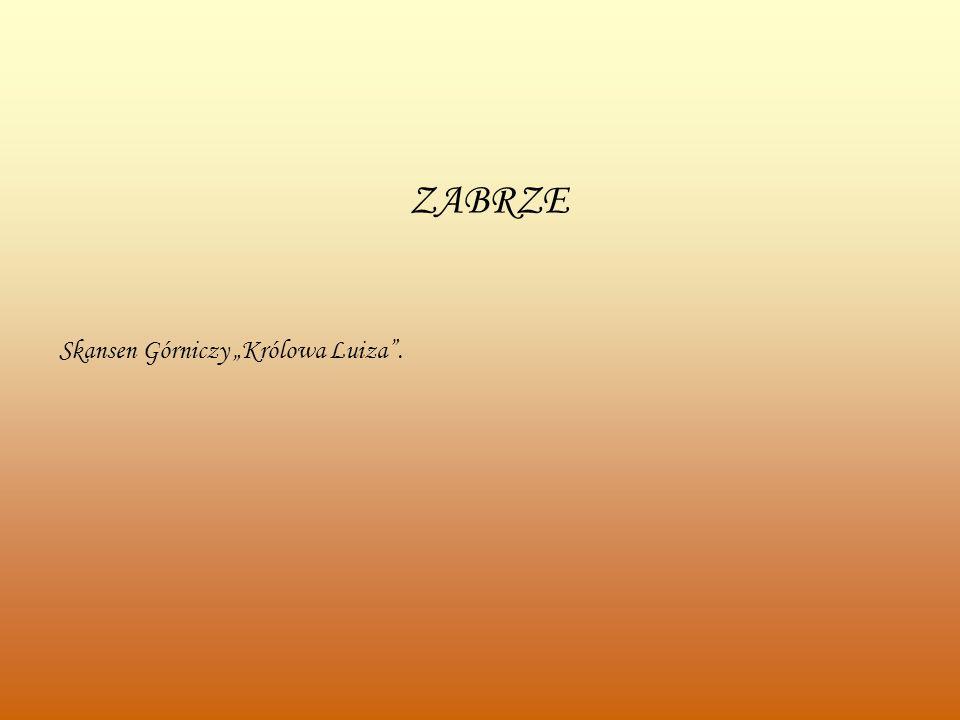 ZABRZE Skansen Górniczy Królowa Luiza.
