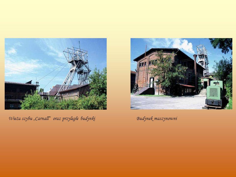 Wieża szybu Carnall oraz przyległe budynkiBudynek maszynowni