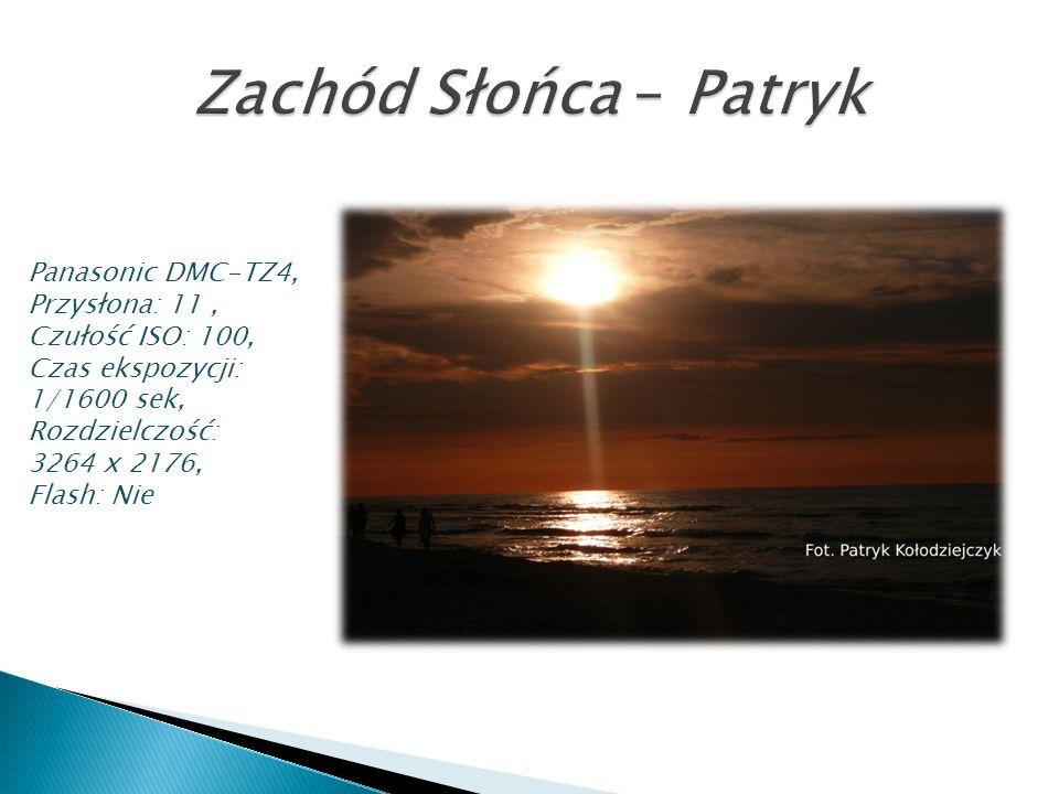 Panasonic DMC-TZ4, Przysłona: 11, Czułość ISO: 100, Czas ekspozycji: 1/1600 sek, Rozdzielczość: 3264 x 2176, Flash: Nie