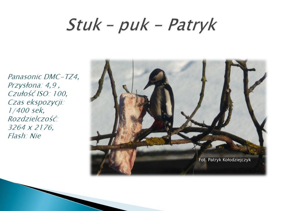 Panasonic DMC-TZ4, Przysłona: 4,9, Czułość ISO: 100, Czas ekspozycji: 1/400 sek, Rozdzielczość: 3264 x 2176, Flash: Nie