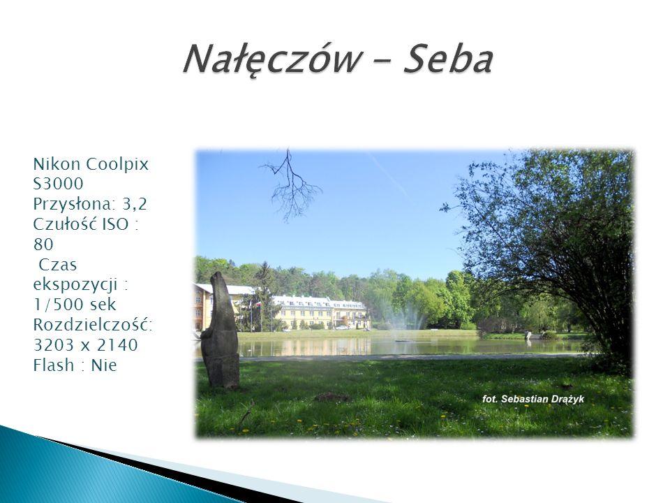 Nikon Coolpix S3000 Przysłona: 3,2 Czułość ISO : 80 Czas ekspozycji : 1/500 sek Rozdzielczość: 3203 x 2140 Flash : Nie
