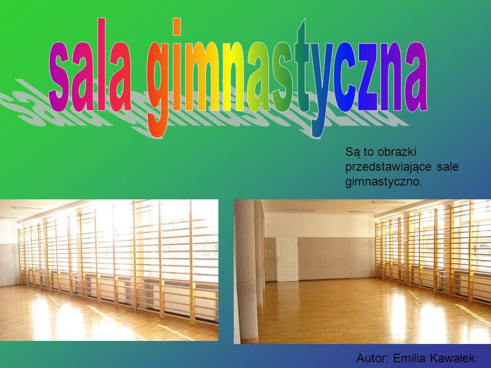 Są to obrazki przedstawiające sale gimnastyczno. Autor: Emilia Kawałek.