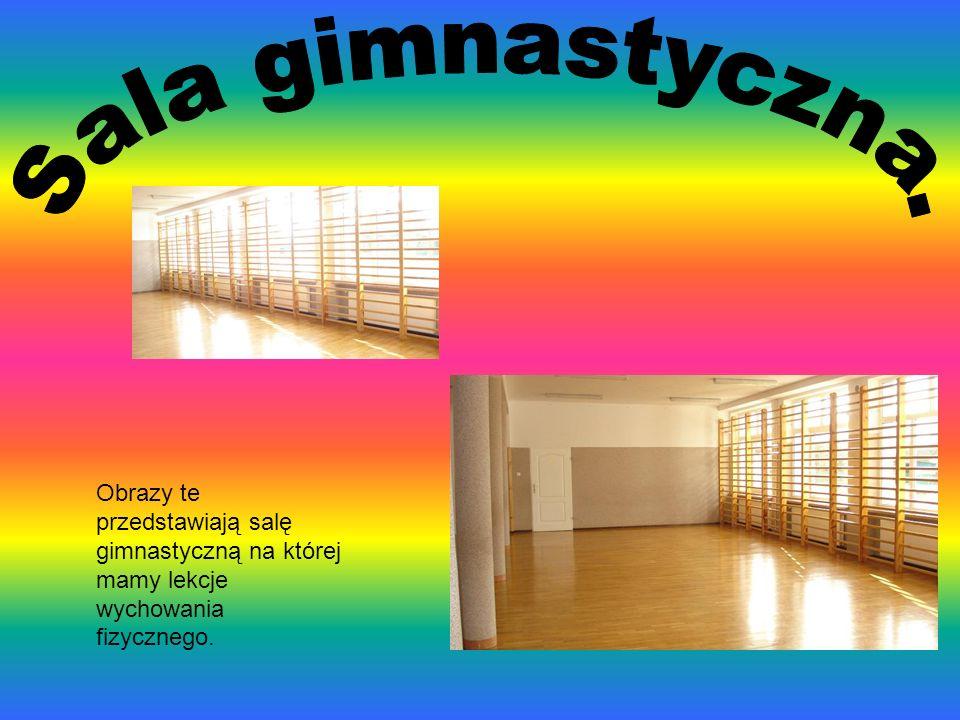 Obrazy te przedstawiają salę gimnastyczną na której mamy lekcje wychowania fizycznego.