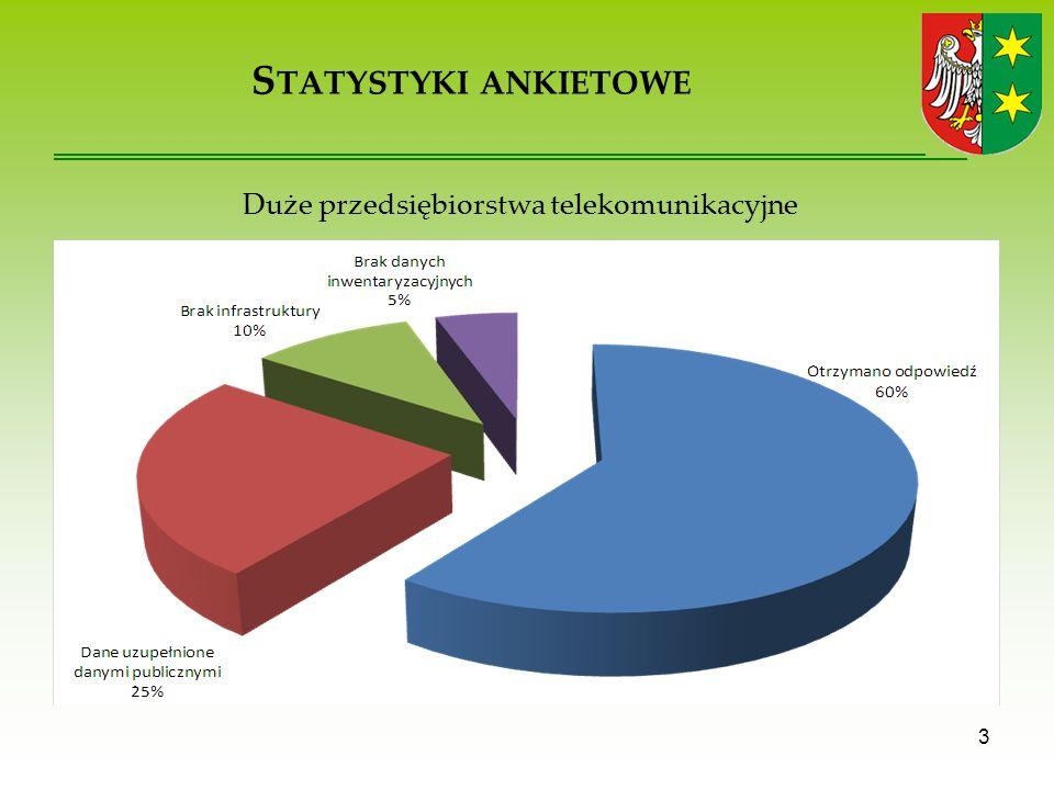 S TATYSTYKI ANKIETOWE 3 Duże przedsiębiorstwa telekomunikacyjne