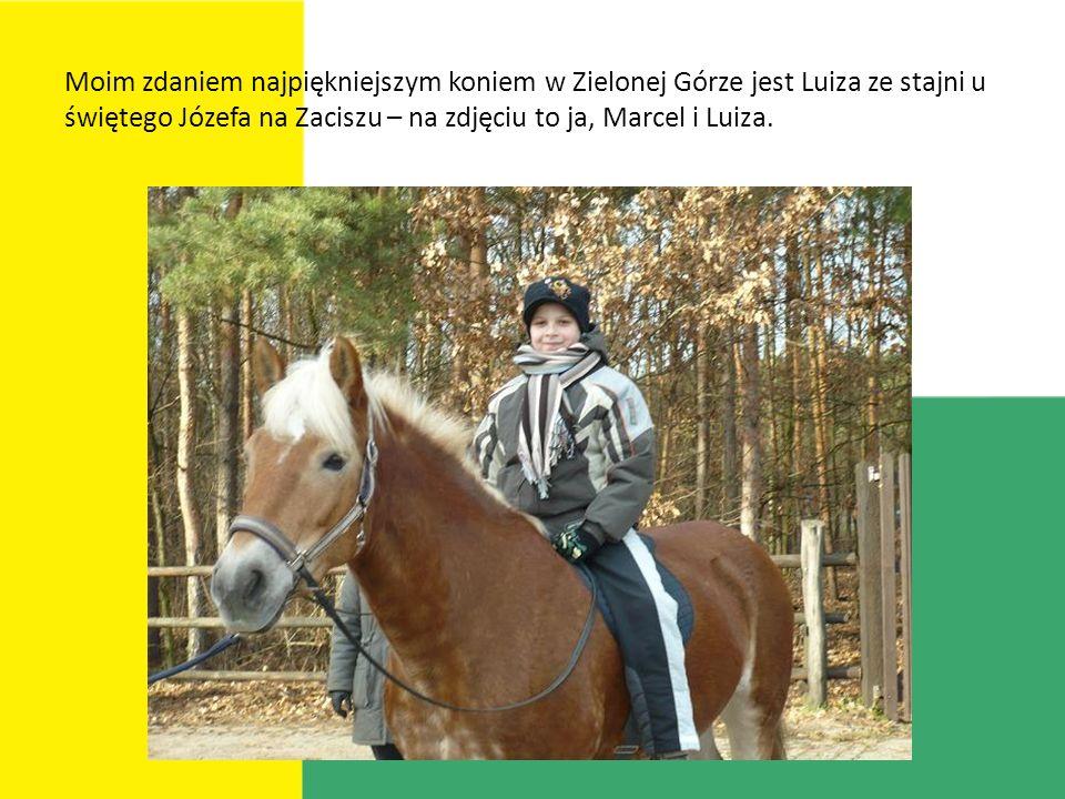 Moim zdaniem najpiękniejszym koniem w Zielonej Górze jest Luiza ze stajni u świętego Józefa na Zaciszu – na zdjęciu to ja, Marcel i Luiza.