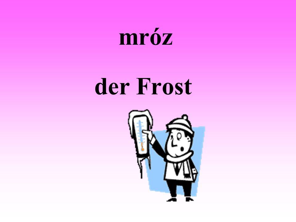 mróz der Frost