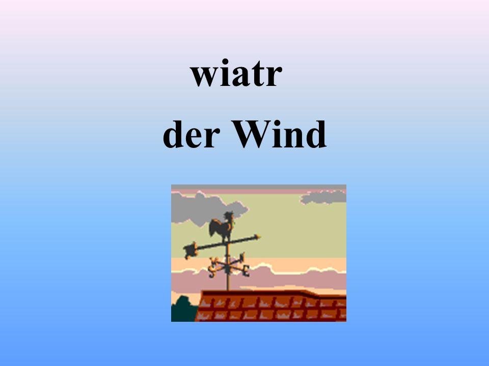 wiatr der Wind