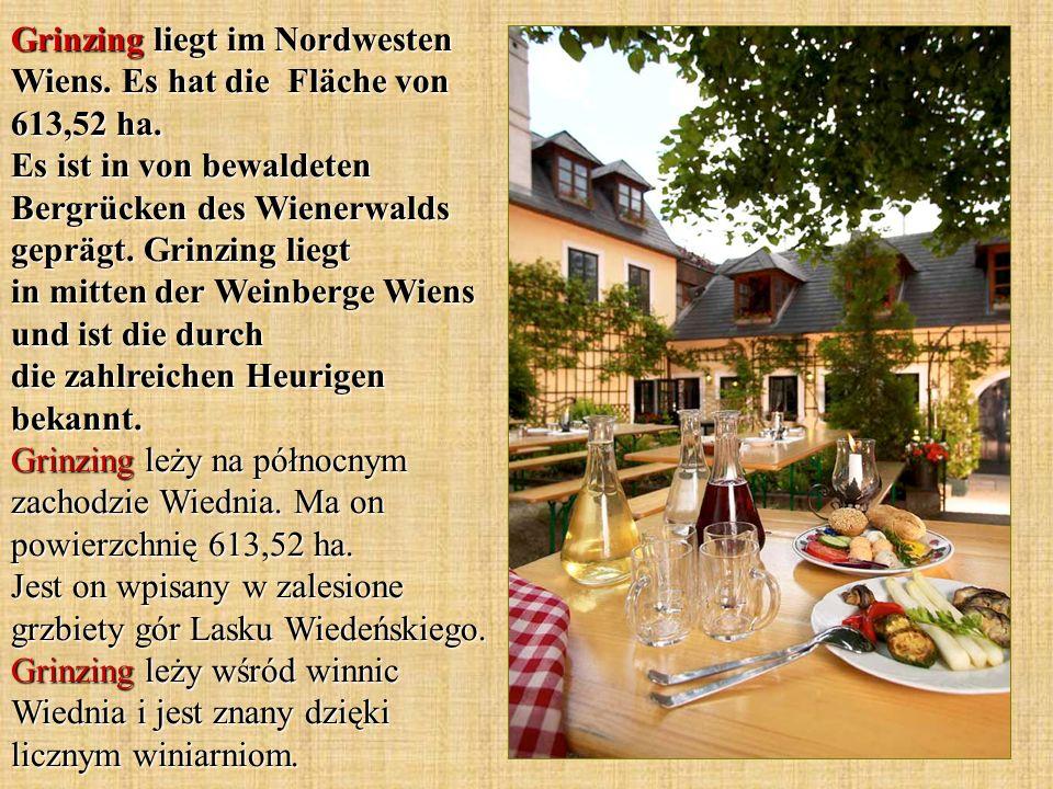 Grinzing liegt im Nordwesten Wiens. Es hat die Fläche von 613,52 ha.
