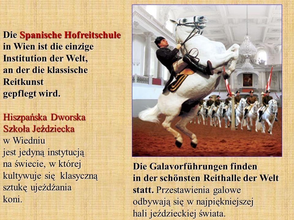 Die Spanische Hofreitschule in Wien ist die einzige Institution der Welt, an der die klassische Reitkunst gepflegt wird.
