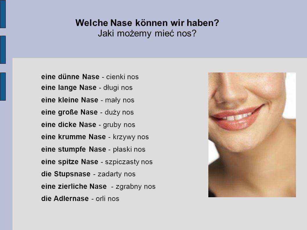 Welche Nase können wir haben? Jaki możemy mieć nos? eine dünne Nase - cienki nos eine lange Nase - długi nos eine kleine Nase - mały nos eine große Na