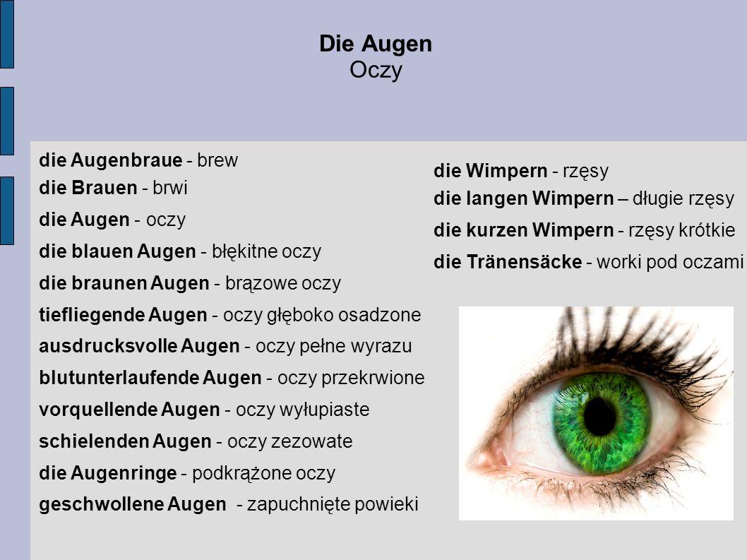Die Augen Oczy die Augenbraue - brew die Brauen - brwi die Augen - oczy die blauen Augen - błękitne oczy die braunen Augen - brązowe oczy tiefliegende