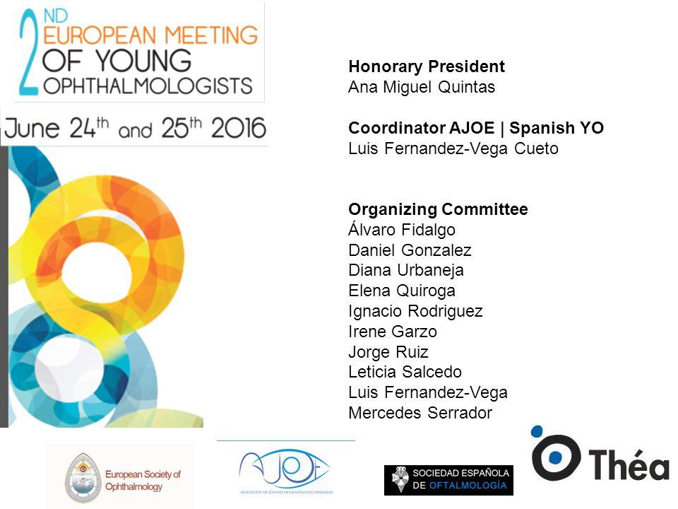 Honorary President Ana Miguel Quintas Coordinator AJOE   Spanish YO Luis Fernandez-Vega Cueto Organizing Committee Álvaro Fidalgo Daniel Gonzalez Dian