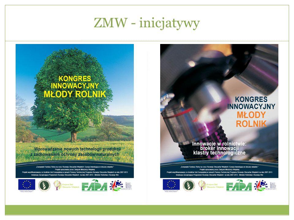 ZMW - inicjatywy