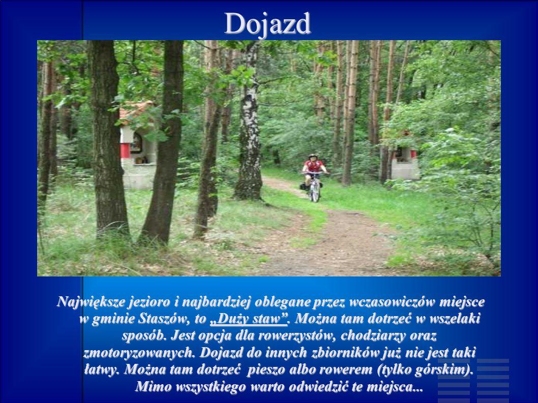 """Dojazd Największe jezioro i najbardziej oblegane przez wczasowiczów miejsce w gminie Staszów, to """"Duży staw ."""