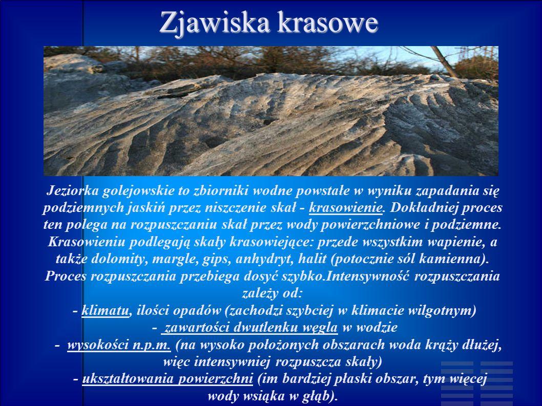 Zjawiska krasowe Jeziorka golejowskie to zbiorniki wodne powstałe w wyniku zapadania się podziemnych jaskiń przez niszczenie skał - krasowienie.