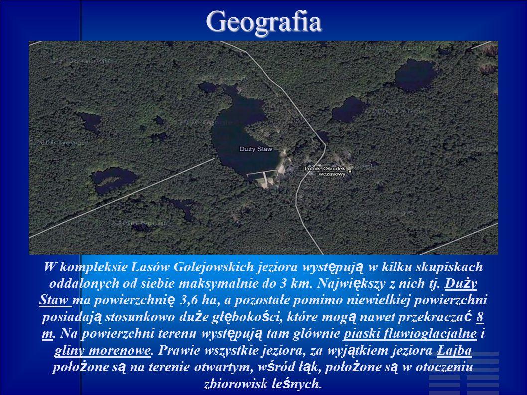 Geografia W kompleksie Lasów Golejowskich jeziora wyst ę puj ą w kilku skupiskach oddalonych od siebie maksymalnie do 3 km.