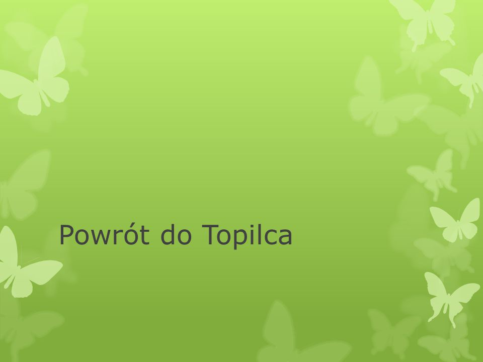 Powrót do Topilca