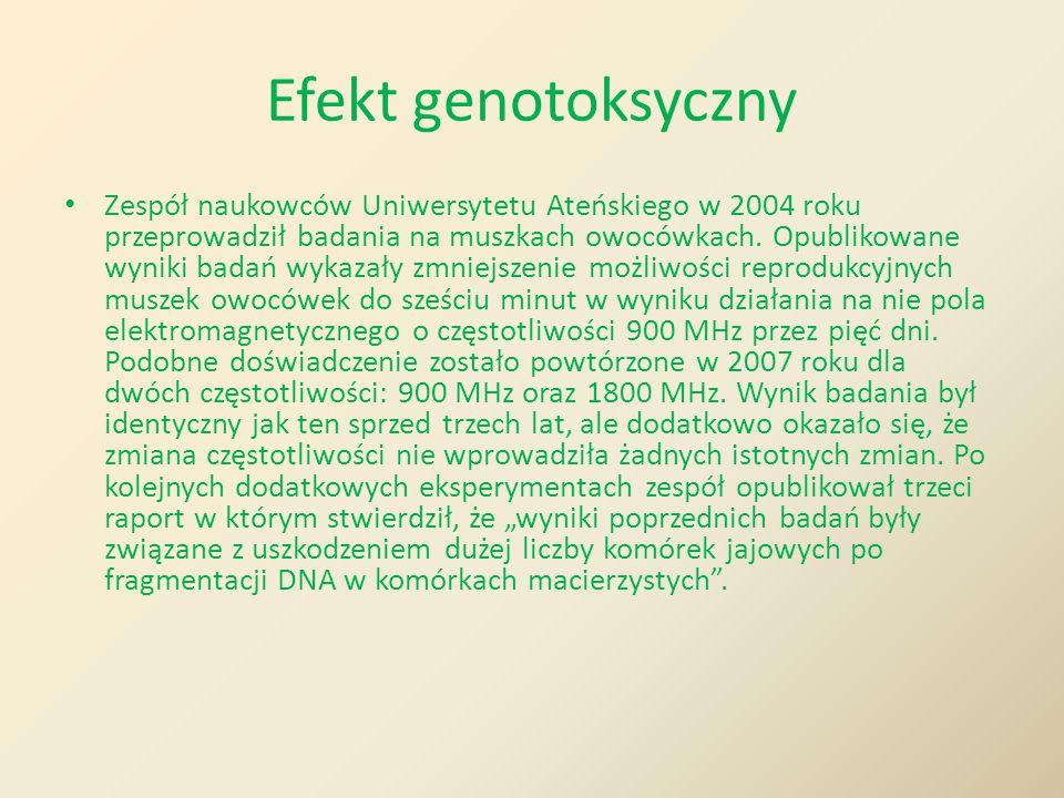 Efekt genotoksyczny Zespół naukowców Uniwersytetu Ateńskiego w 2004 roku przeprowadził badania na muszkach owocówkach. Opublikowane wyniki badań wykaz