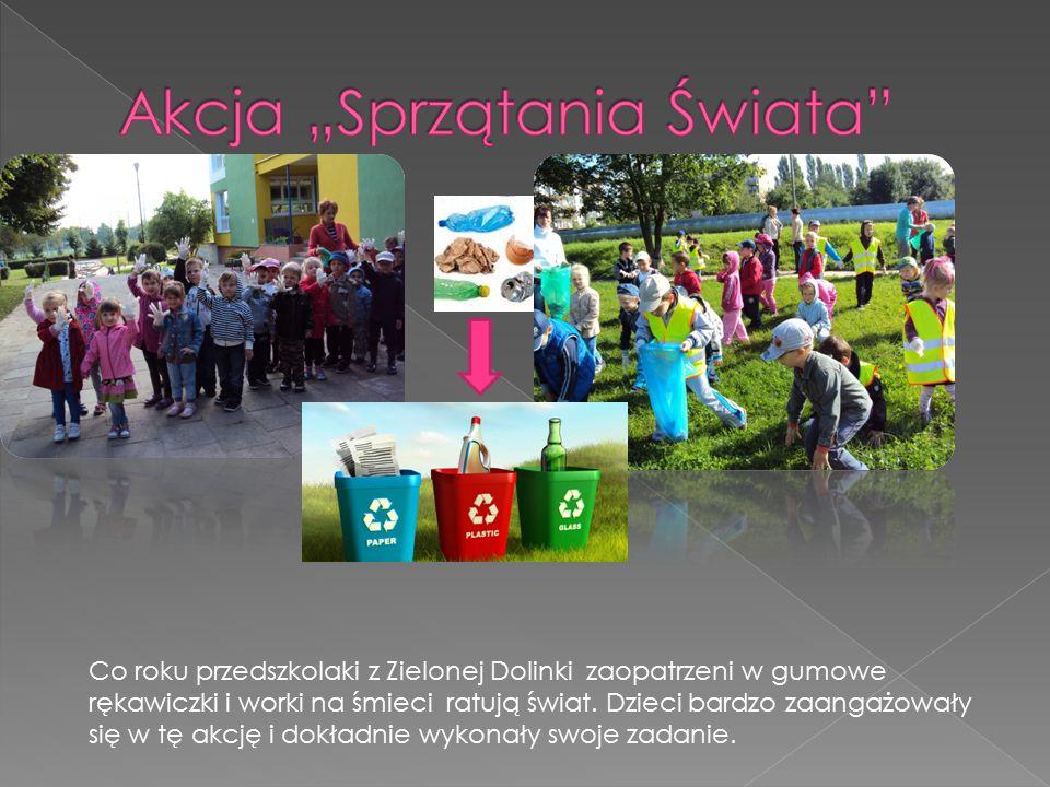 Co roku przedszkolaki z Zielonej Dolinki zaopatrzeni w gumowe rękawiczki i worki na śmieci ratują świat. Dzieci bardzo zaangażowały się w tę akcję i d