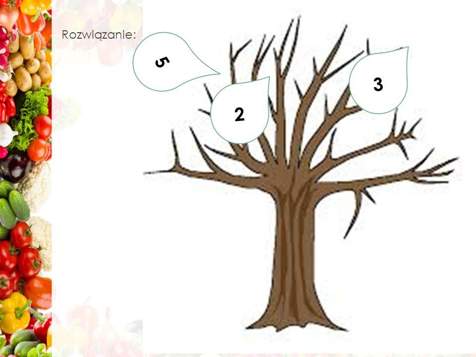 Rozwiązanie: 5 3 2