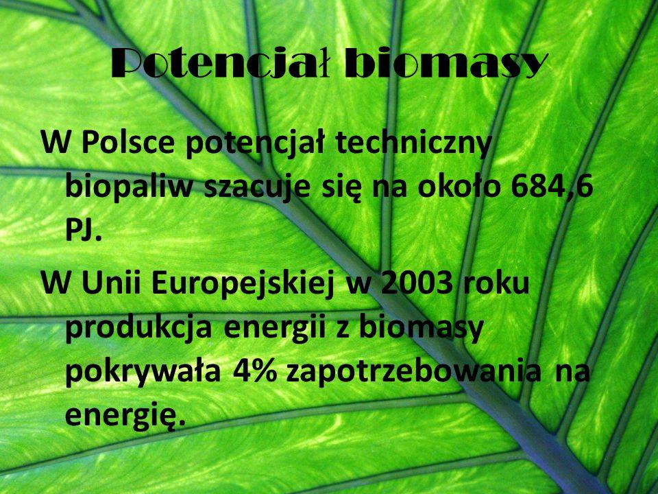 Potencja ł biomasy W Polsce potencjał techniczny biopaliw szacuje się na około 684,6 PJ. W Unii Europejskiej w 2003 roku produkcja energii z biomasy p