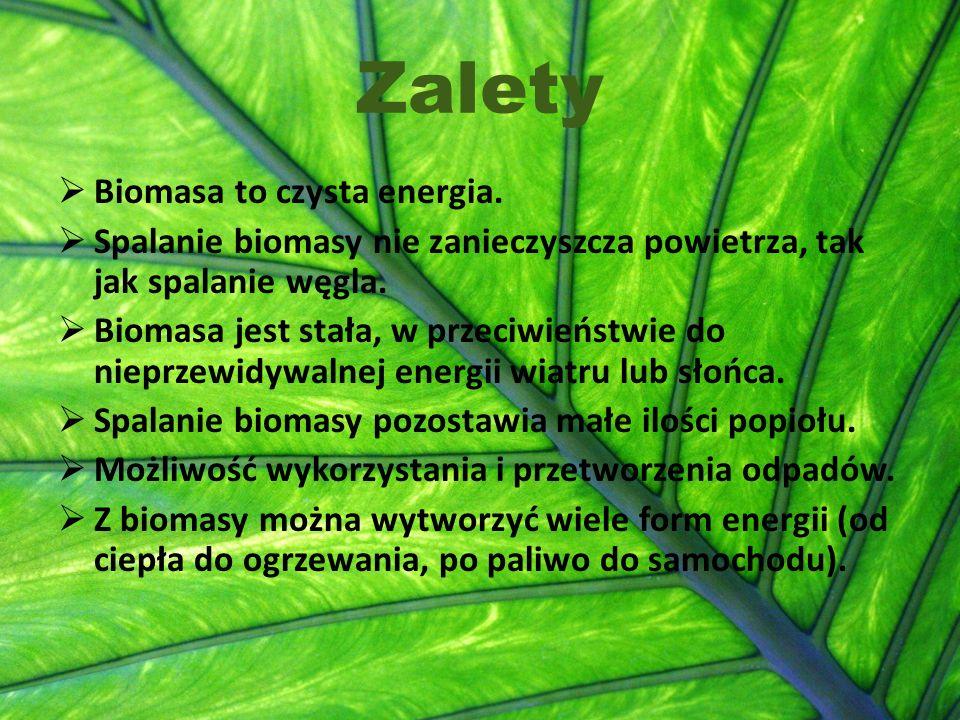 Zalety  Biomasa to czysta energia.  Spalanie biomasy nie zanieczyszcza powietrza, tak jak spalanie węgla.  Biomasa jest stała, w przeciwieństwie do