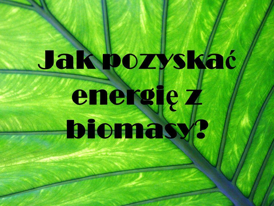 Jak pozyska ć energi ę z biomasy?