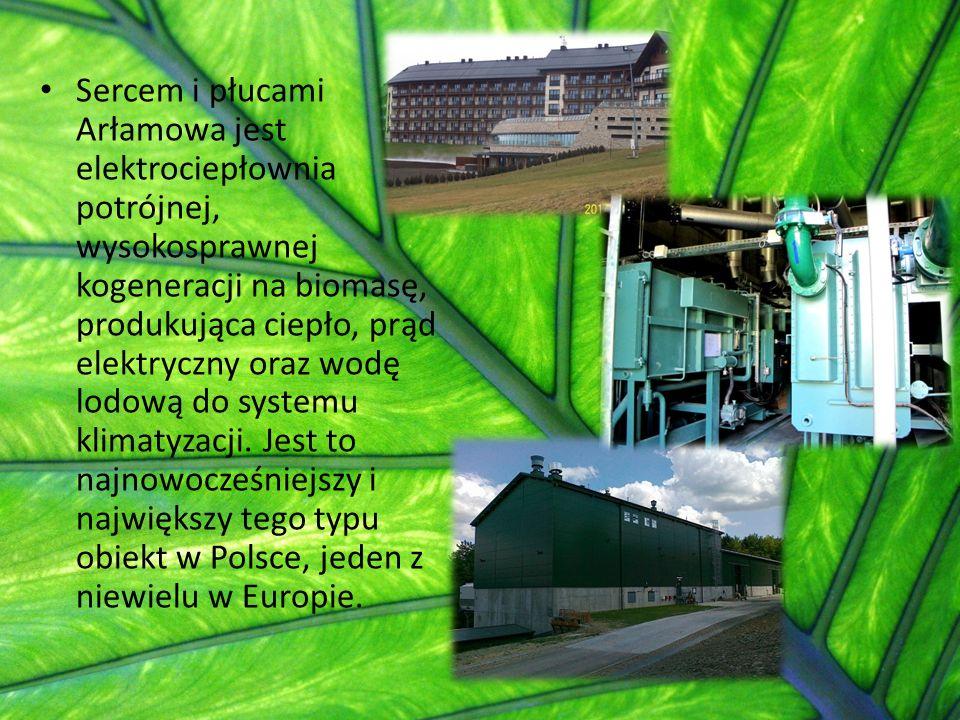 Sercem i płucami Arłamowa jest elektrociepłownia potrójnej, wysokosprawnej kogeneracji na biomasę, produkująca ciepło, prąd elektryczny oraz wodę lodo