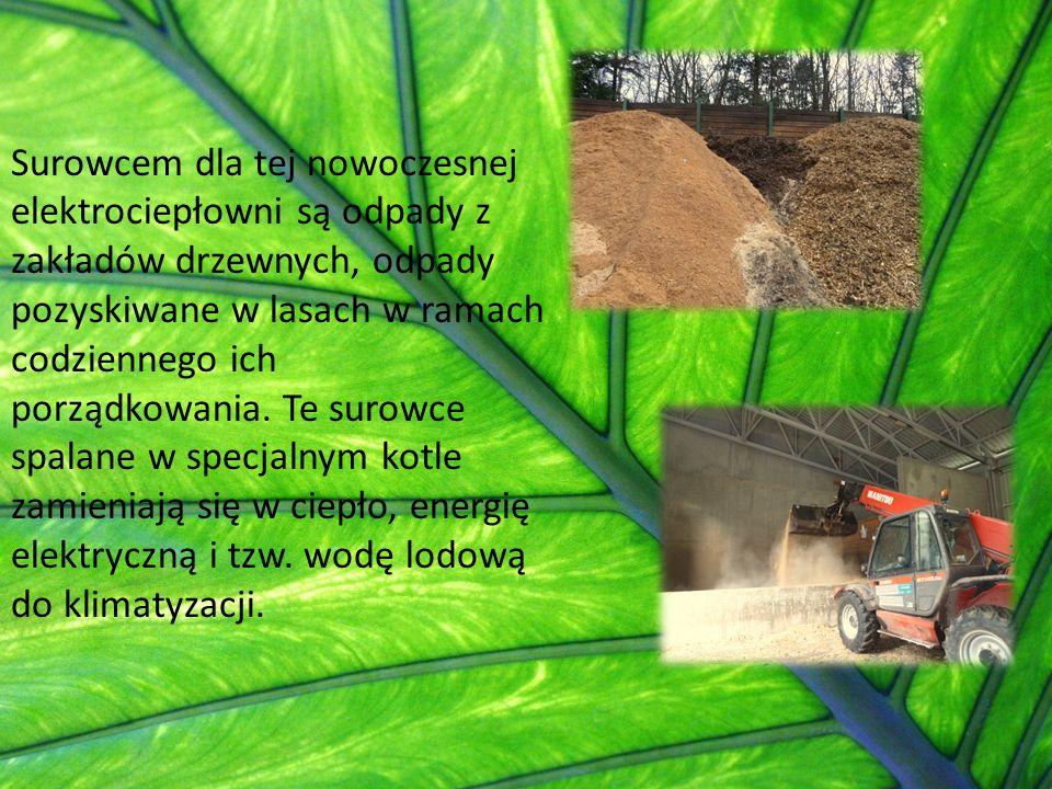 Surowcem dla tej nowoczesnej elektrociepłowni są odpady z zakładów drzewnych, odpady pozyskiwane w lasach w ramach codziennego ich porządkowania.