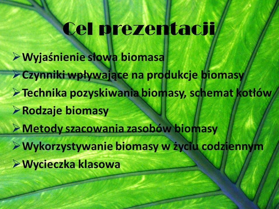 Cel prezentacji  Wyjaśnienie słowa biomasa  Czynniki wpływające na produkcje biomasy  Technika pozyskiwania biomasy, schemat kotłów  Rodzaje biomasy  Metody szacowania zasobów biomasy  Wykorzystywanie biomasy w życiu codziennym  Wycieczka klasowa
