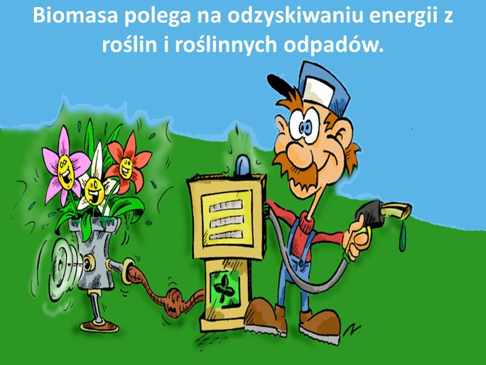 Biomasa Jest to ogół materii organicznej, która może być wykorzystana energetycznie.