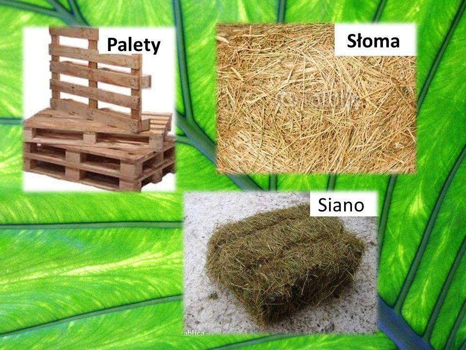Biopaliwo Biopaliwo jest odnawialnym źródłami energii, powstaje w wyniku przetwórstwa biomasy, czyli produktów pochodzenia organicznego.