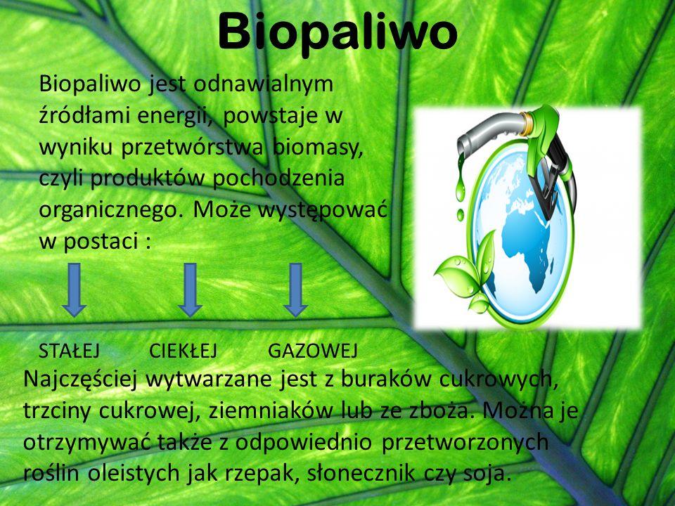 Biopaliwo Biopaliwo jest odnawialnym źródłami energii, powstaje w wyniku przetwórstwa biomasy, czyli produktów pochodzenia organicznego. Może występow