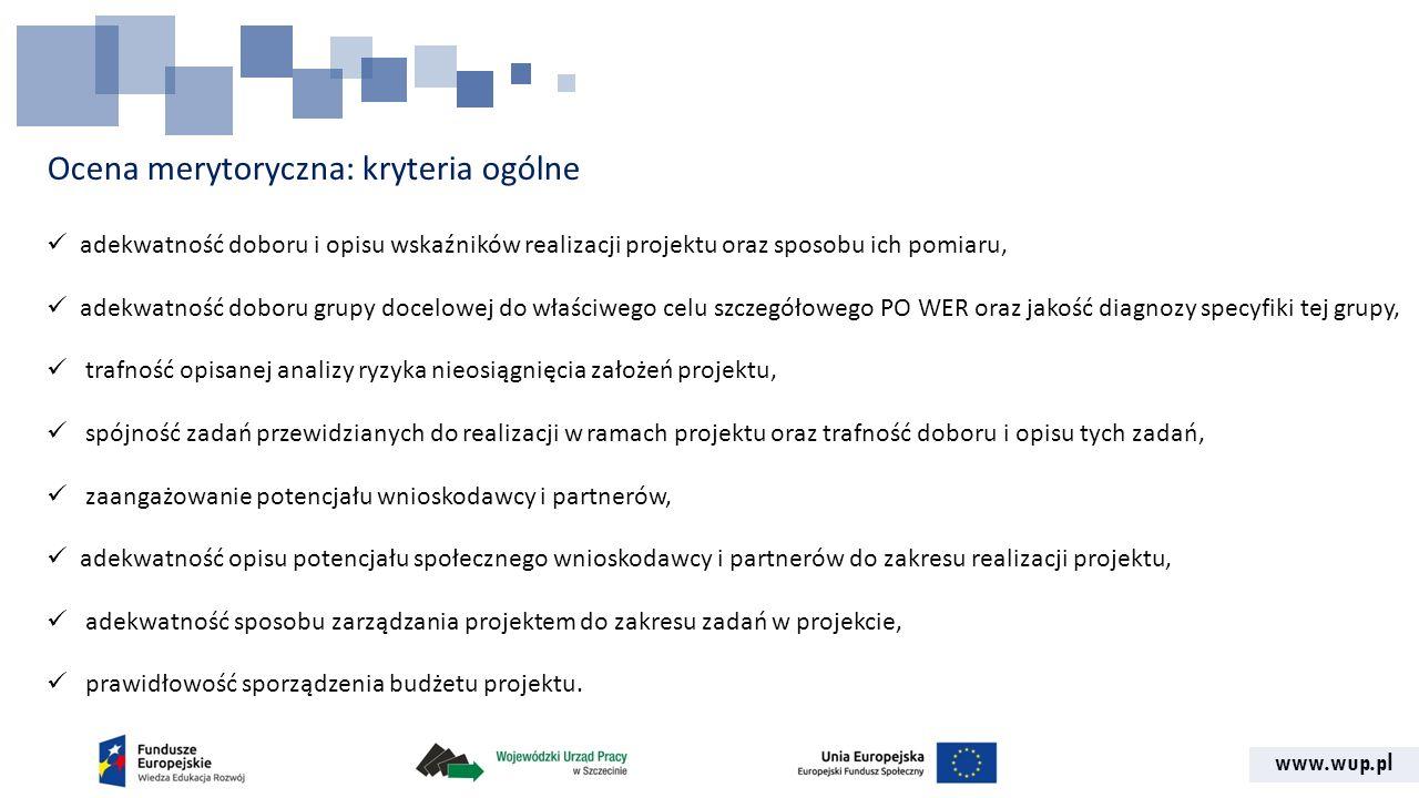 www.wup.pl Ocena merytoryczna: kryteria ogólne adekwatność doboru i opisu wskaźników realizacji projektu oraz sposobu ich pomiaru, adekwatność doboru