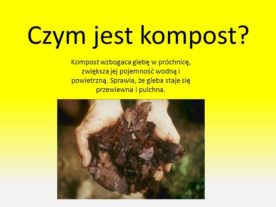 Czym jest kompost.Kompost wzbogaca glebę w próchnicę, zwiększa jej pojemność wodną i powietrzną.