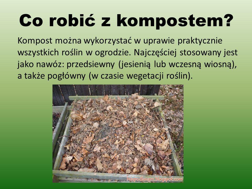 Co robić z kompostem.Kompost można wykorzystać w uprawie praktycznie wszystkich roślin w ogrodzie.