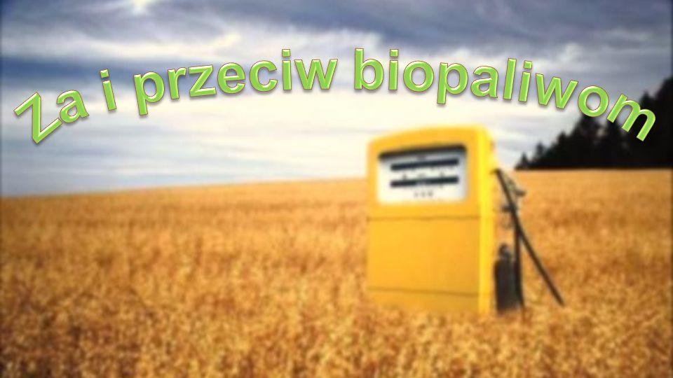 Aspekt humanitarny Odbieranie terenów pod uprawę biopaliw Wzrost cen żywności Przykład: W Meksyku 3x wzrost ceny kukurydzy – głównej rośliny uprawnej oraz źródła pożywienia mieszkańców Zmniejszenie światowych zasobów żywnościowych Głód