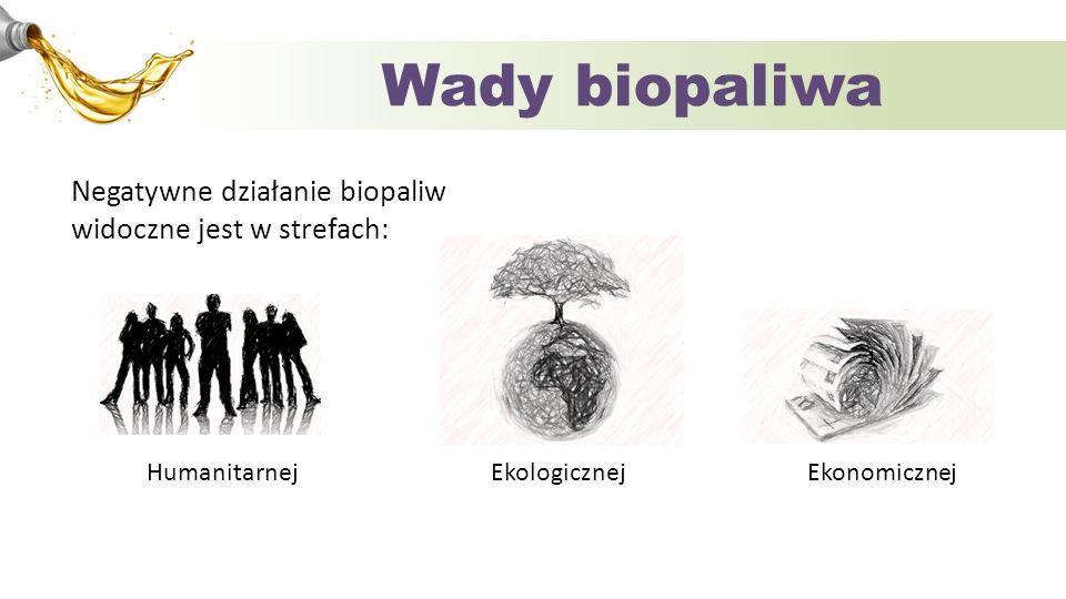 Wady biopaliwa Humanitarnej Ekologicznej Ekonomicznej Negatywne działanie biopaliw widoczne jest w strefach: