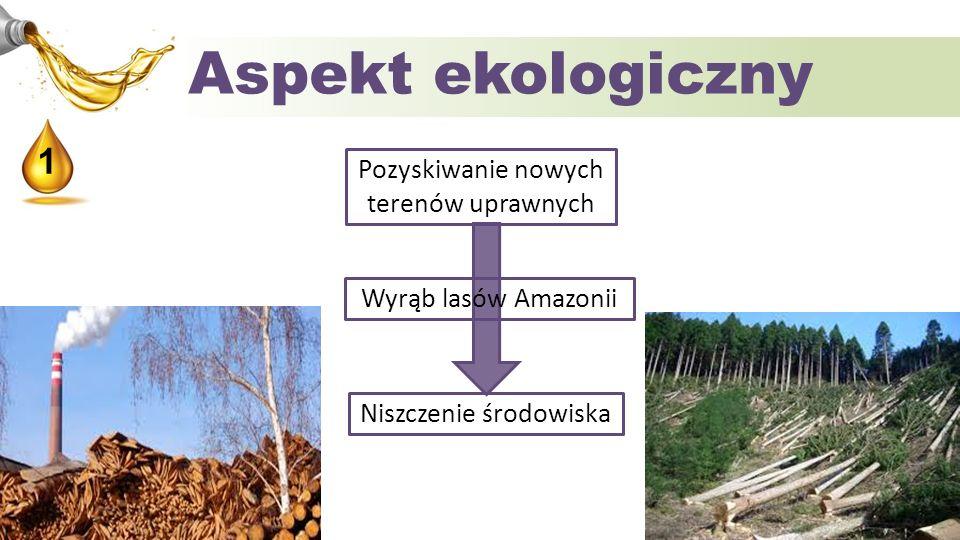 Aspekt ekologiczny Pozyskiwanie nowych terenów uprawnych Niszczenie środowiska 1 Wyrąb lasów Amazonii