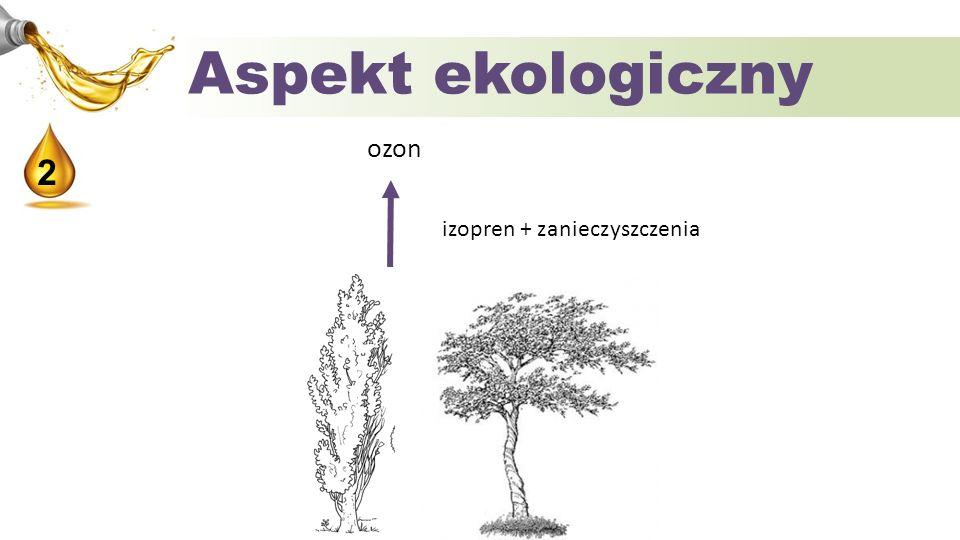 Aspekt ekologiczny 2 ozon izopren + zanieczyszczenia