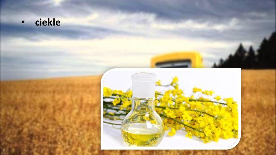Biopaliwo jest mniej efektywne energetycznie niż tradycyjne paliwo.