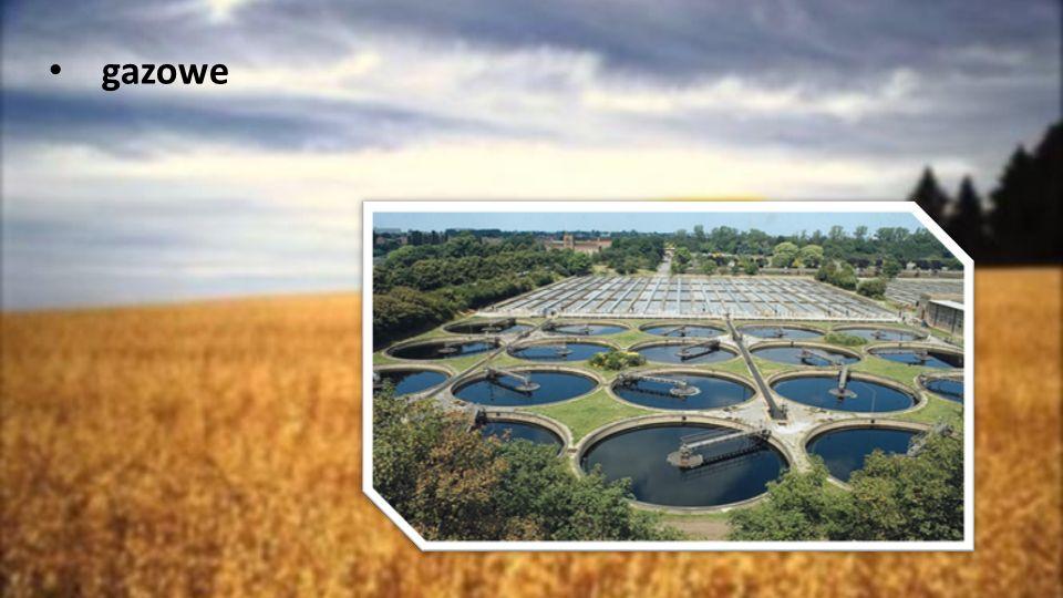 Rodzaje Biopaliwa Biopaliwa dzieli się ze względu na rodzaj użytego surowca oraz technologię jego przetworzenia na: biopaliwa I generacji –wytwarzane z rośliny uprawnych, takich jak kukurydza, trzcina cukrowa, rzepak czy buraki cukrowe, biopaliwa II generacji –wytwarzane np.