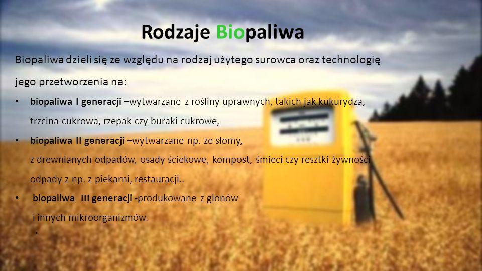 Rodzaje Biopaliwa Biopaliwa dzieli się ze względu na rodzaj użytego surowca oraz technologię jego przetworzenia na: biopaliwa I generacji –wytwarzane